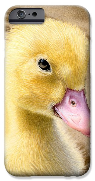 Baby Bird iPhone Cases - Just Ducky iPhone Case by Sarah Batalka