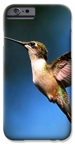 Just Looking iPhone Case by Christina Rollo