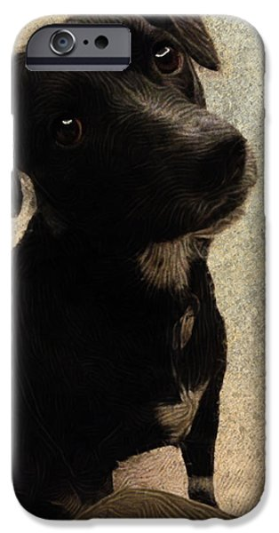Setter Pointer Puppy iPhone Cases - Just One Question... iPhone Case by Paul Gioacchini