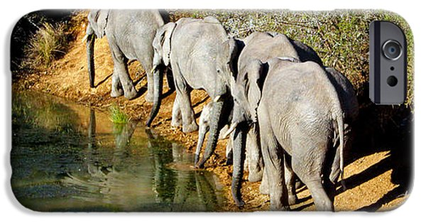Elephants iPhone Cases - Just passing iPhone Case by Chris Whittle