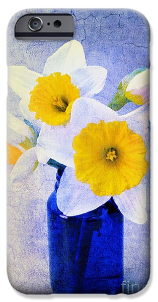 Just Plain Daffy 2 In Blue - Flora - Spring - Daffodil - Narcissus - Jonquil  iPhone Case by Andee Design