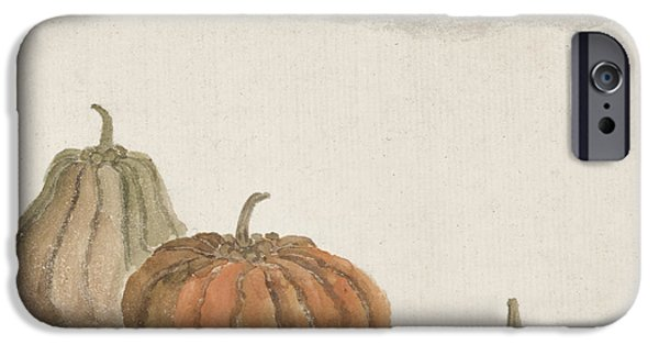 Squash iPhone Cases - Kabocha squash iPhone Case by Aged Pixel