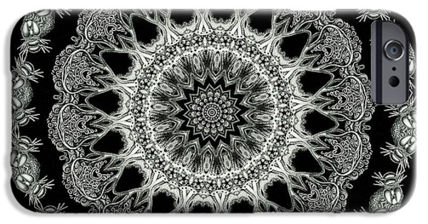 Haeckel iPhone Cases - Kaleidoscope Ernst Haeckl Sea Life Series Black and White Set 2 iPhone Case by Amy Cicconi