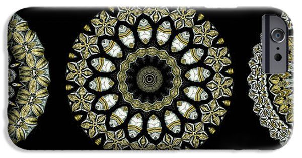 Haeckel iPhone Cases - Kaleidoscope Ernst Haeckl Sea Life Series Steampunk Feel Triptyc iPhone Case by Amy Cicconi