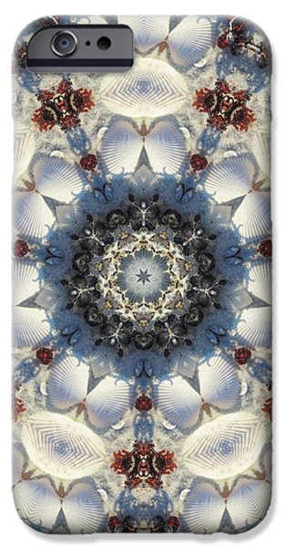 Kaleidoscope Seashells iPhone Case by Cathy Lindsey