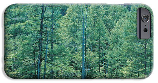Texture iPhone Cases - Kamikouchi Nagano Japan iPhone Case by Panoramic Images