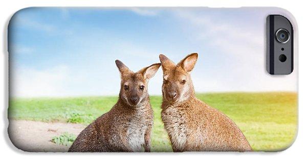 Recently Sold -  - Couple iPhone Cases - Kangaroo couple Australia iPhone Case by Michal Bednarek