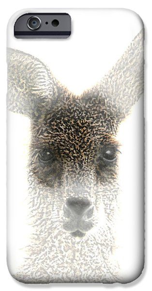 Ears Digital iPhone Cases - Kangaroo iPhone Case by Holly Kempe