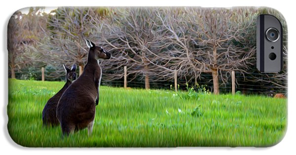 Kangaroo Digital Art iPhone Cases - Kangaroos Together iPhone Case by Phill Petrovic