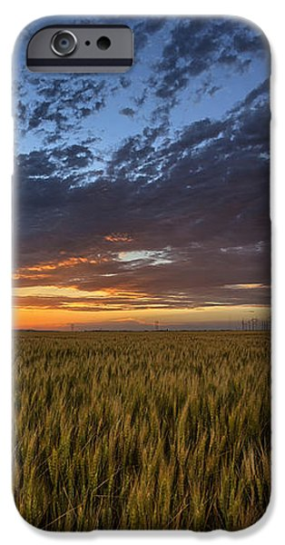 Kansas Color iPhone Case by Thomas Zimmerman