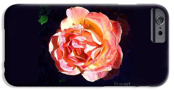 Botanical iPhone Cases - Karens Rose iPhone Case by Barbie Corbett-Newmin