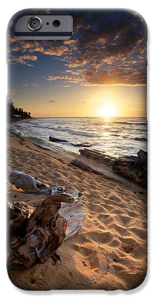 Driftwood iPhone Cases - Kauai Beach East iPhone Case by Ed Boudreau