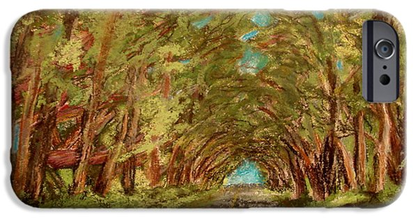 Impression Pastels iPhone Cases - Kauiai Tunnel of trees iPhone Case by Joseph Hawkins