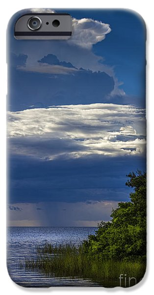 Park Scene iPhone Cases - Keep A Eye on The Sky iPhone Case by Marvin Spates