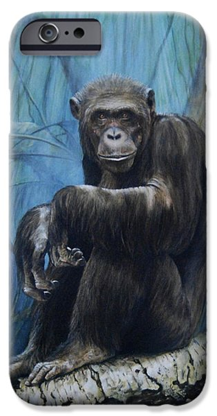 Monkey iPhone Cases - Keeper of the Congo iPhone Case by Rob Dreyer AFC