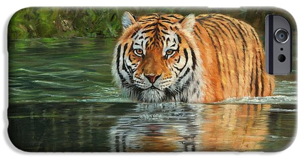 Bengal Tiger iPhone Cases - Keeping Cool iPhone Case by David Stribbling