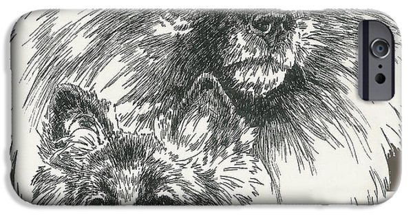 Animal Drawings iPhone Cases - Keeshund Father and Son iPhone Case by Barbara Keith