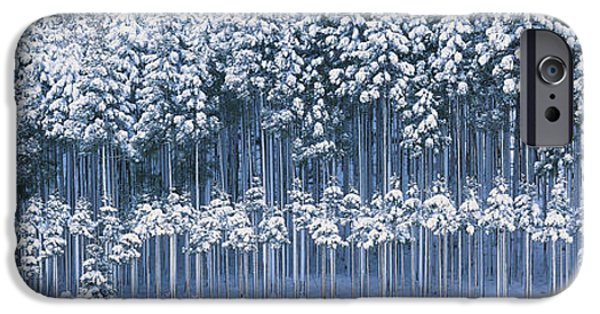 Snow Covered Trees iPhone Cases - Keihoku-cho Kyoto Japan iPhone Case by Panoramic Images