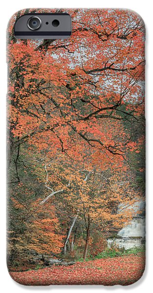 Kent Connecticut iPhone Cases - Kent Falls Maple Tree iPhone Case by Bill  Wakeley