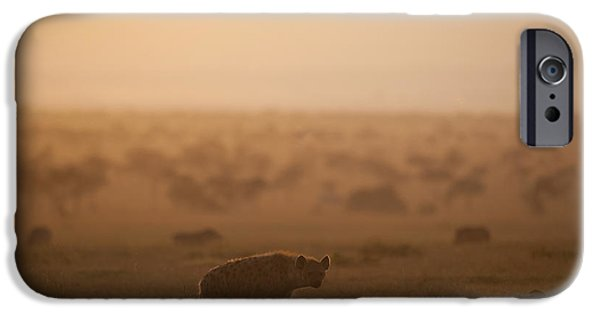Simple Beauty In Colors iPhone Cases - Kenya, Hyena With Cubs At Dawn In Ol iPhone Case by Ian Cumming