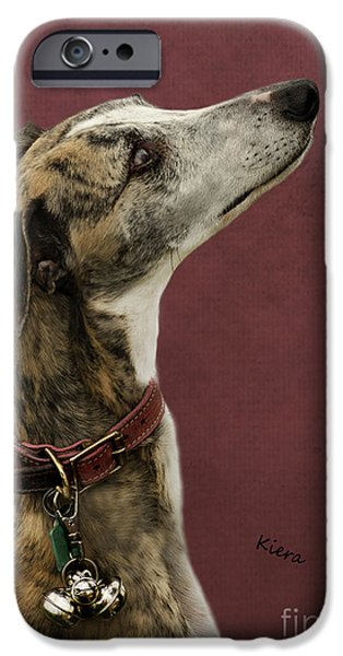 Rescued Greyhound iPhone Cases - Kiera iPhone Case by Linsey Williams