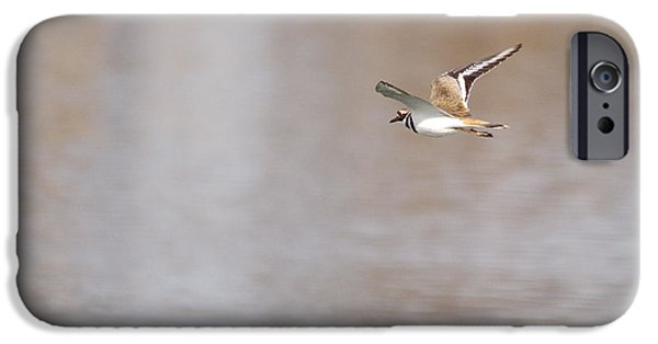 Pen And Ink Photographs iPhone Cases - Killdeer In Flight iPhone Case by Roy Williams