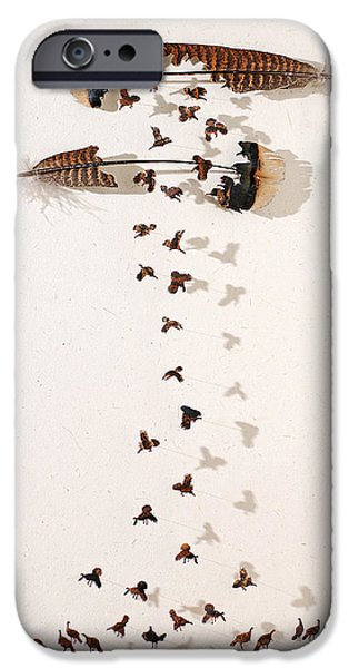 Birds Reliefs iPhone Cases - Kims Turkeys iPhone Case by Chris Maynard