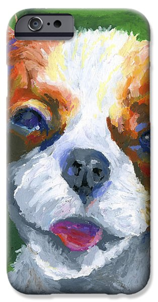 King Charles iPhone Case by Stephen Anderson