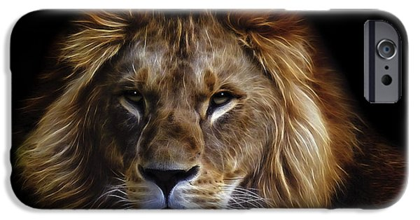 Preditor iPhone Cases - KING of AFRICA iPhone Case by Daniel Hagerman