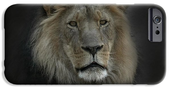 Lion Digital iPhone Cases - King of Beasts Portrait iPhone Case by Ernie Echols