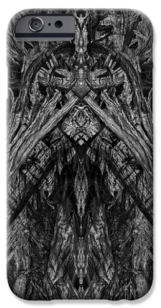 King of the Wood iPhone Case by David Gordon
