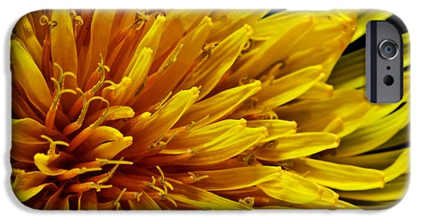 Nature Abstracts iPhone Cases - Kiss of the spring iPhone Case by Gyorgy Kotorman