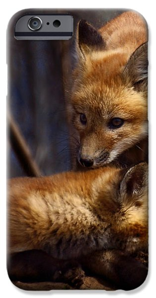 Kit Foxes iPhone Case by Thomas Young
