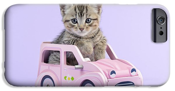 Animals Photos iPhone Cases - Kitten in Pink Car  iPhone Case by Greg Cuddiford