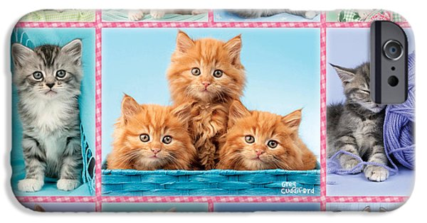 Greg Cuddiford Digital iPhone Cases - Kittens Gingham Multi-pic iPhone Case by Greg Cuddiford