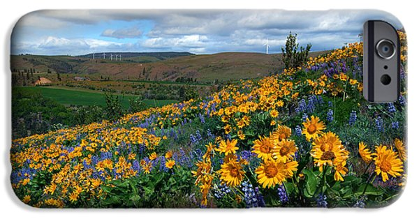 Spring iPhone Cases - Kittitas Valley Color Explosion iPhone Case by Mike  Dawson