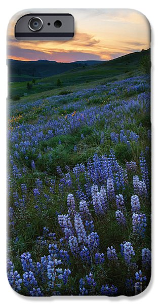 Meadow Photographs iPhone Cases - Kittitas Valley Spring iPhone Case by Mike  Dawson