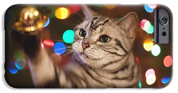 American Shorthair iPhone Cases - Kitty In The Lights iPhone Case by April Reppucci