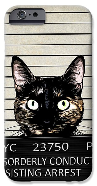 Arrest iPhone Cases - Kitty Mugshot iPhone Case by Nicklas Gustafsson