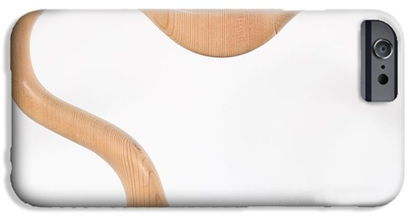 Abstract Sculptures iPhone Cases - Kiwi iPhone Case by David Mayeau