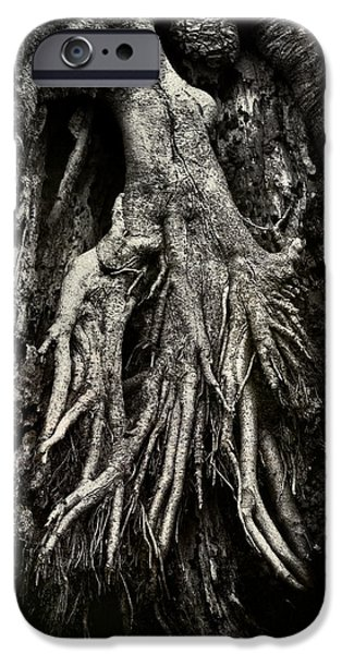 Tree Roots Photographs iPhone Cases - Kneeling at the Feet of the Green Man iPhone Case by Rebecca Sherman