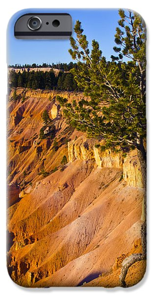 Know Your Roots - Bryce Canyon iPhone Case by Jon Berghoff