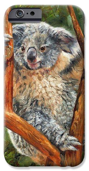 Koala iPhone Cases - Koala iPhone Case by David Stribbling
