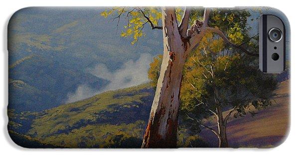 Koala iPhone Cases - Koala in the Tree iPhone Case by Graham Gercken