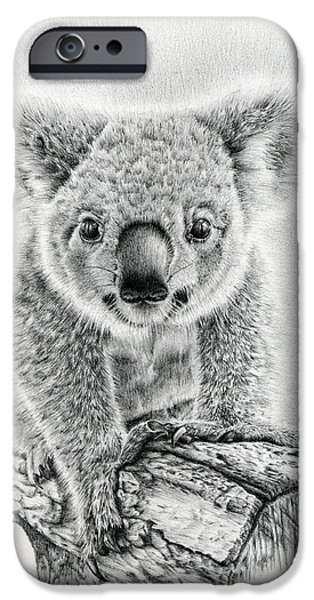 Pencil Portrait Drawings iPhone Cases - Koala Oxley Twinkles iPhone Case by Heidi Vormer