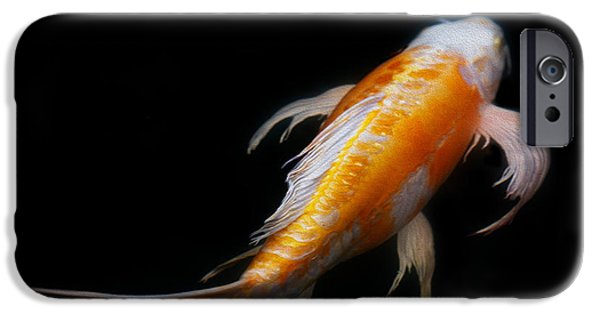 Koi iPhone Cases - Koi 3 iPhone Case by Rebecca Cozart