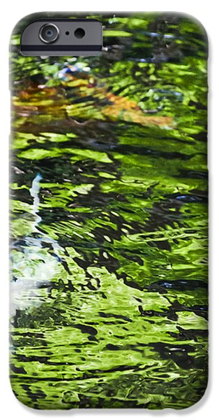 Koi Pond iPhone Case by Christi Kraft