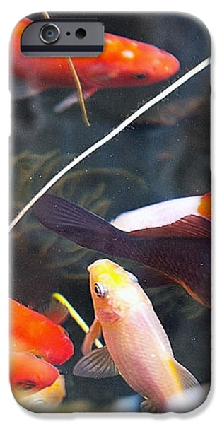Koi Pond the Symbol of Love and Friendship iPhone Case by Artist and Photographer Laura Wrede