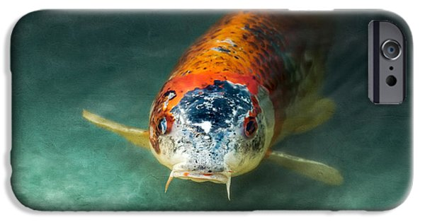 Koi iPhone Cases - Koi iPhone Case by Wim Lanclus