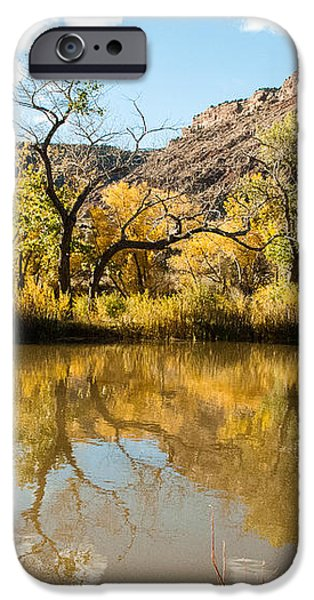 Kolob Pond in Fall Zion National Park Utah iPhone Case by Robert Ford